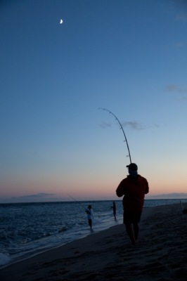 6. fish on at twilight